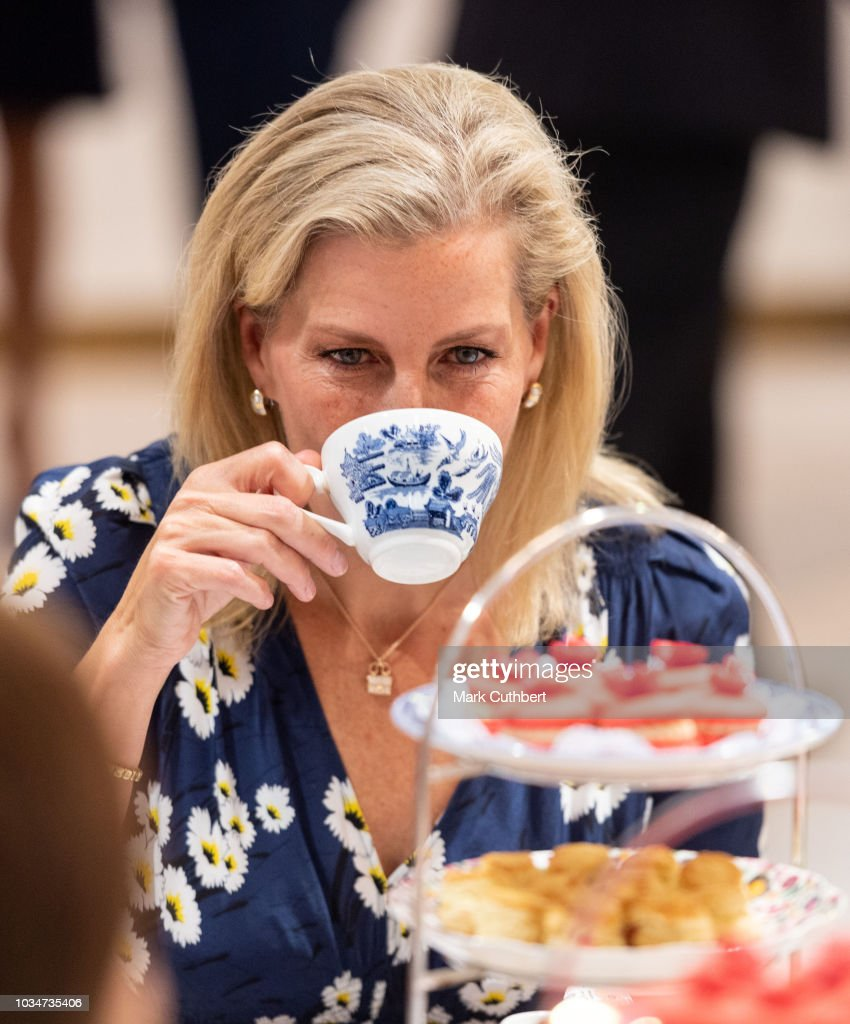 sophie-countess-of-wessex-has-afternoon-tea-with-employees-during-a-picture-id1034735406