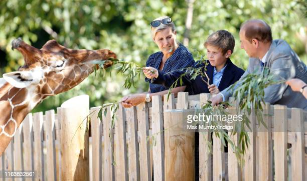 Sophie Countess of Wessex James Viscount Severn and Prince Edward Earl of Wessex feed a giraffe as they visit The Wild Place Project at Bristol Zoo...