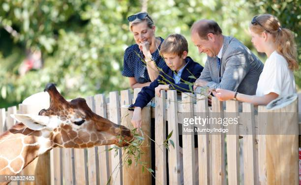 Sophie Countess of Wessex James Viscount Severn Prince Edward Earl of Wessex and Lady Louise Windsor feed a giraffe as they visit The Wild Place...