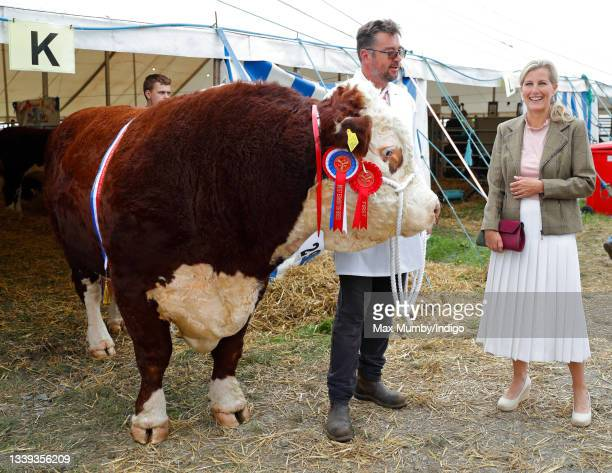 Sophie, Countess of Wessex meets a prizewinning Hereford bull as she visits the Westmorland County Show on September 9, 2021 in Milnthorpe, England.