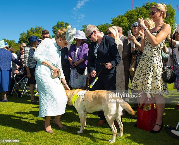Sophie Countess of Wessex meets Royal Navy veteran Sue Eyles from Brighton and her guide dog Zara at a garden party at Buckingham Palace on June 4...