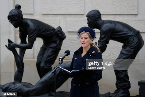 Sophie, Countess of Wessex speaks on the Armed Forces Memorial during Armistice Day commemorations at the National Memorial Arboretum on November 11,...