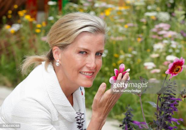 Sophie Countess of Wessex visits the Blind Veterans UK Community Show Garden on day 1 of the Hampton Court Flower Show at Hampton Court Palace on...
