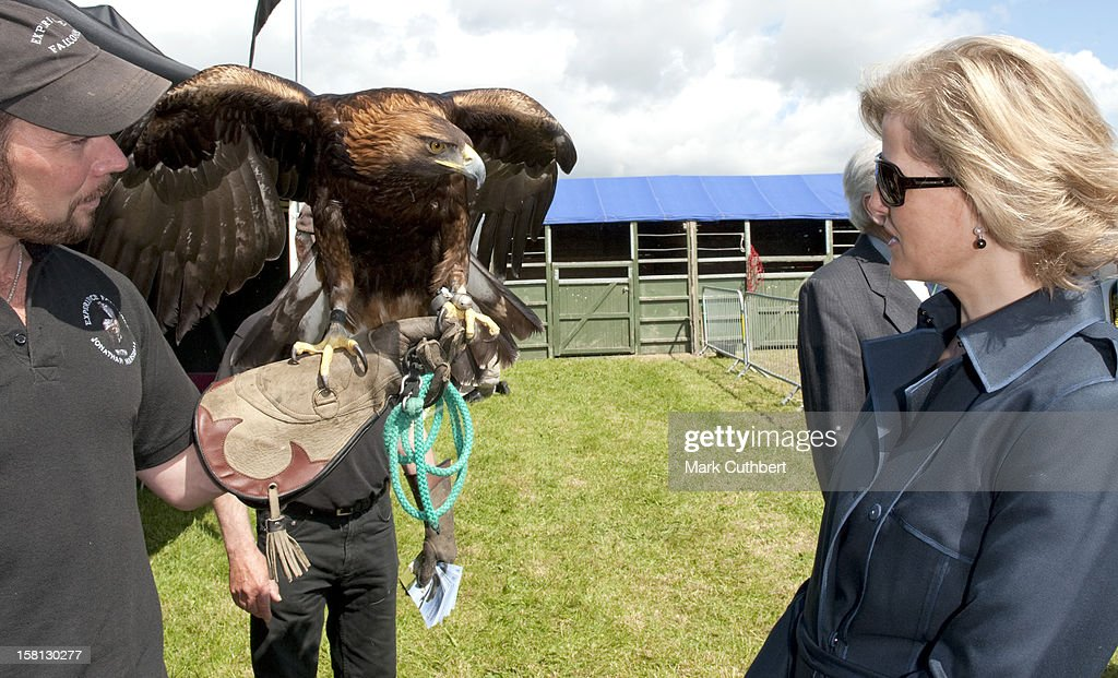 Earl And Countess Of Wessex Visit The Devon Show : News Photo