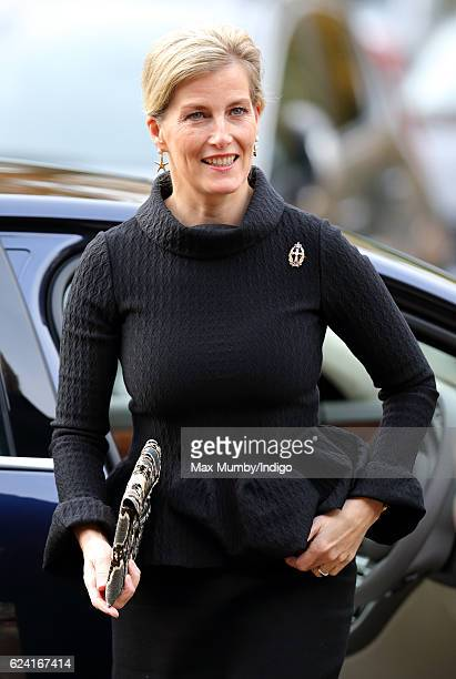 Sophie, Countess of Wessex visits the Queen Alexandra's Royal Army Nursing Corps at the The Royal Military Academy Sandhurst, where she unveiled a...