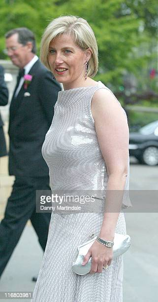 Sophie HRH The Countess of Wessex during The Blush Ball 2007 Outside Arrivals at Natural History Museum in London Great Britain