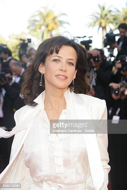 Sophie Marceau arrives at the premiere of 'Zodiac' during the 60th Cannes Film Festival