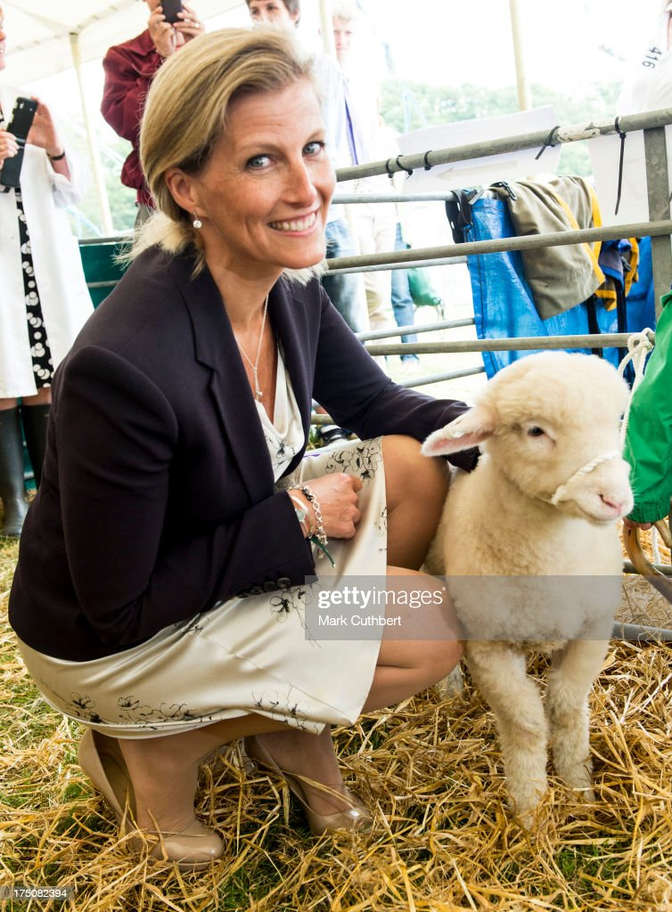 Sophie Rhys-Jones, Countess of Wessex strokes a 4 month old lamb called 'Twinkle' during her visit to the New Forest and Hampshire county show at The Showground, New Park on July 31, 2013 in Brockenhurst, England.