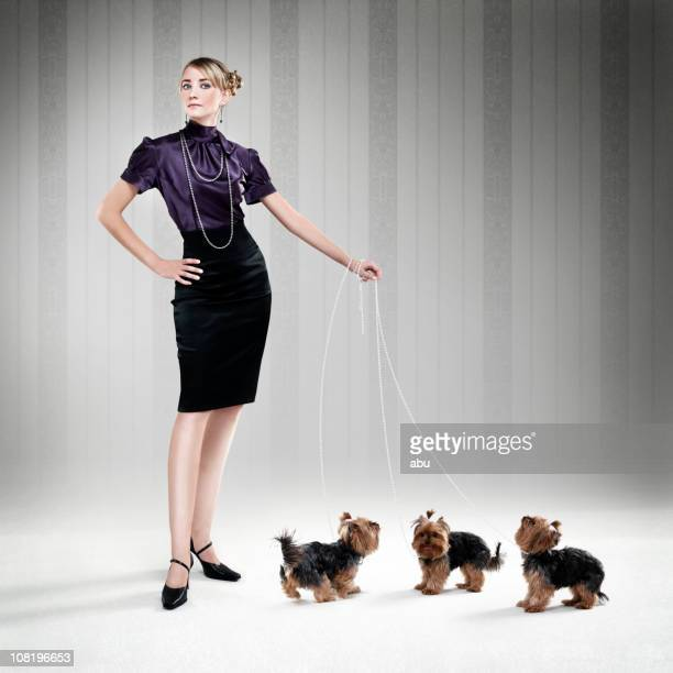 Sophisticated Woman Walking Three Yorkshire Terrier Puppies