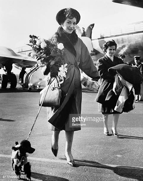 Soprano Maria Callas leaves the field at Idlewild Airport after her arrival from Europe With her is her pet dog Toy Miss Callas who made a triumphant...