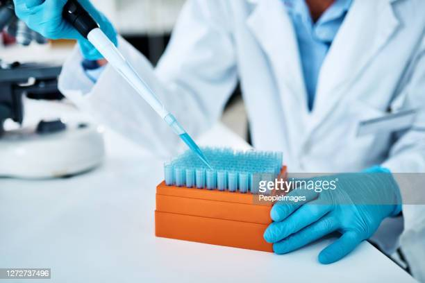 sorting some samples for further testing - forensicpathologist stock pictures, royalty-free photos & images