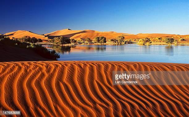 sossusvlei - namibia stock-fotos und bilder