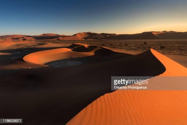 sossusvlei,sand dunes in desert, namibia, africa - namibia stock-fotos und bilder