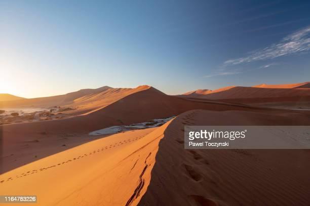 sossuvlei sand dunes at sun rise, namibia, 2018 - kalahari desert fotografías e imágenes de stock