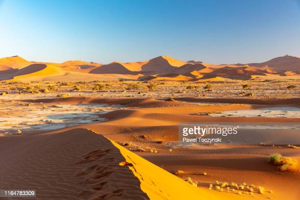 sossuvlei sand dunes at sun rise, namibia, 2018 - national landmark stock pictures, royalty-free photos & images