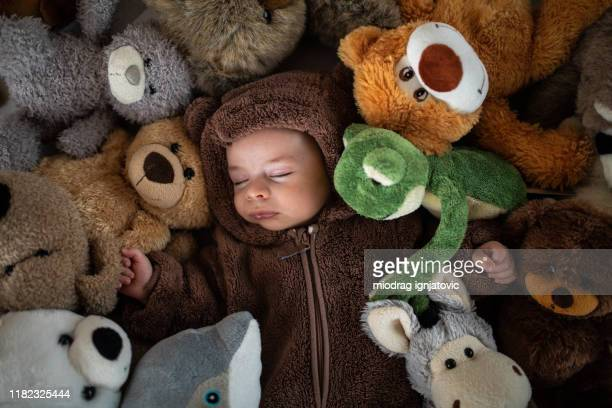 sound asleep in a peaceful slumber - stuffed toy stock pictures, royalty-free photos & images