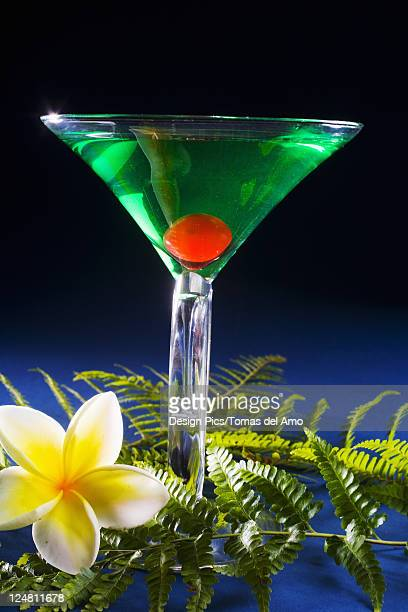 A sour apple martini on a blue background with green fern and plumeria.