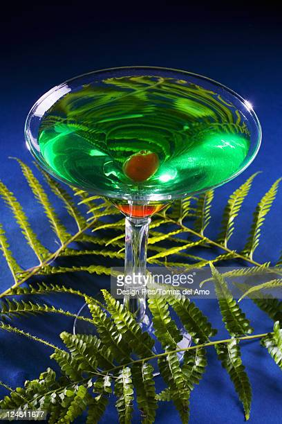 A sour apple martini on a blue background with green fern.