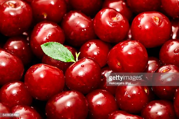sour cherries - サワーチェリー ストックフォトと画像