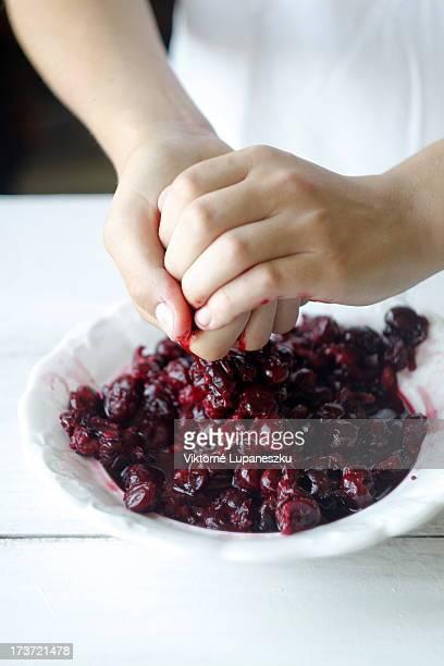 sour cherry filling