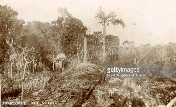 Source Rio Verde Bolivia 1907 Artist Percy Harrison Fawcett
