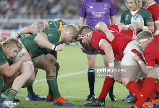 South Africa and Wales players form a scrum during the second half of a Rugby World Cup semifinal on Oct 27 in Yokohama near Tokyo