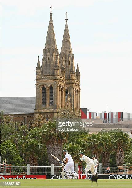 South Africa bat with St Peter's Cathedral in the background during day three of the Second Test Match between Australia and South Africa at Adelaide...