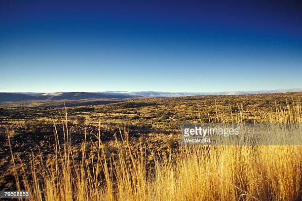 south africa, beaufort west, western cape, moteno pass, view over karoo national park - the karoo stock photos and pictures