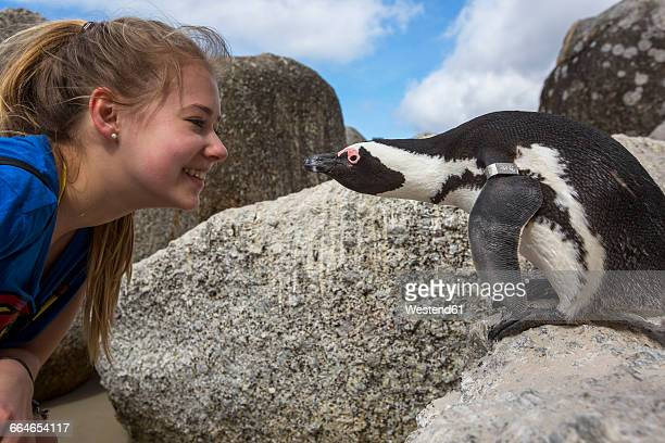 South Africa, Capetown, teenage girl and african penguin, Spheniscus demersus