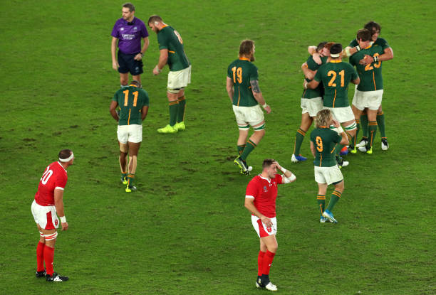 JPN: Wales v South Africa - Rugby World Cup 2019: Semi-Final