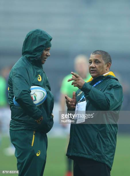 South Africa coach Allister Coetzee during the Rugby test match between Italy and South Africa at Plebiscito Stadium in Padova Italy on November 25...