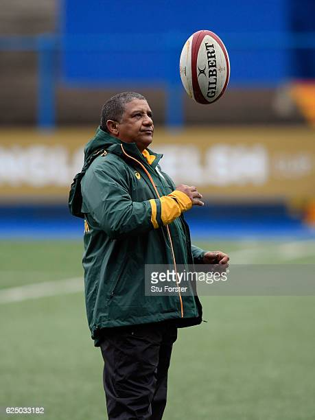 South Africa Coach Allister Coetzee looks on during Springbok training ahead of their International match against Wales at Cardiff Arms Park on...
