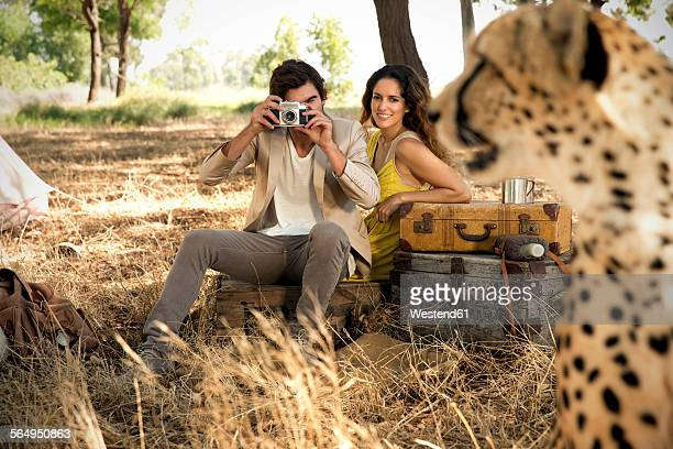 South Africa, couple photographing cheetah