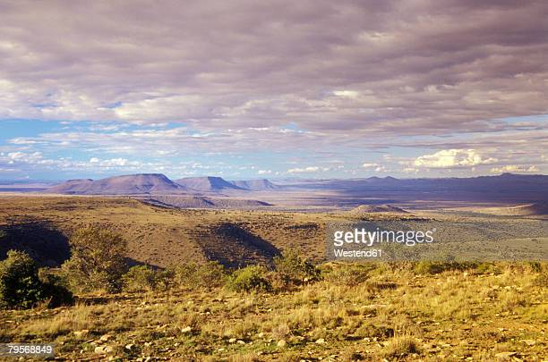 south africa, eastern cape, mountain zebra national park, cradock, karoo - the karoo stock photos and pictures