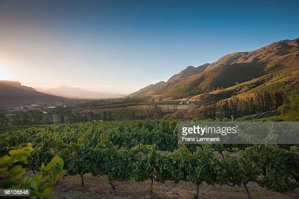South Africa, Franschhoek, Panoramic view