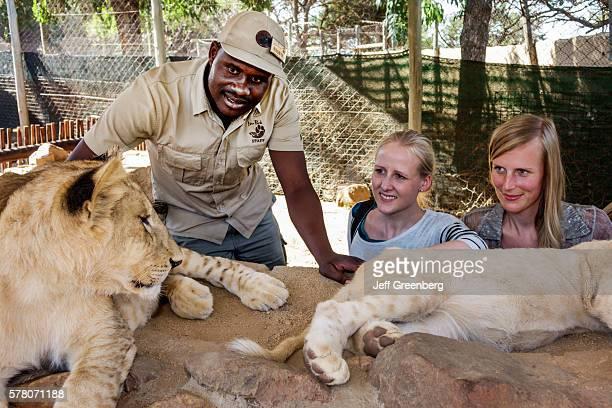South Africa Johannesburg Lion Park wildlife conservation woman lion cubman staff employee interaction