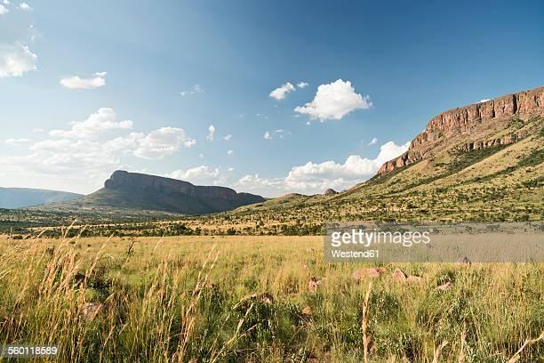 South Africa, Limpopo, Marakele National Park, Waterberg