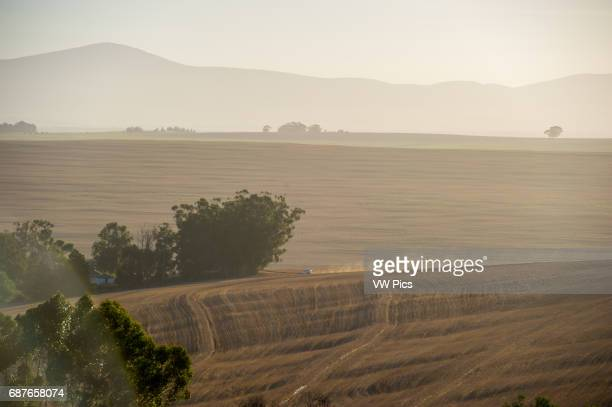 South Africa South African farm land with wheat stubble
