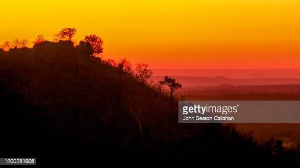 south africa, sunrise - マプマランガ州 ストックフォトと画像