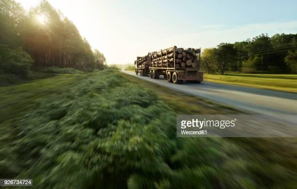 South Africa, Tsitsikamma National Park, Garden Route, wood transport