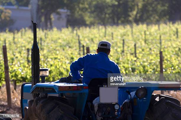 South African farmer on tractor vineyard Wine Estate Cape Town