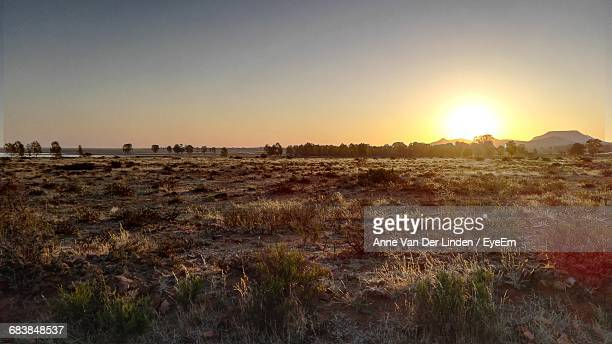 south african landscape against clear sky during sunset - the karoo stock photos and pictures