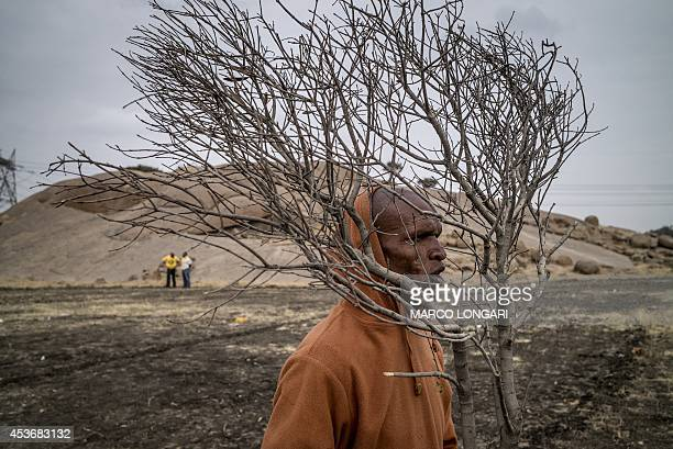A South African miner dances carrying a branch of tree on August 16 2014 in front of the hill where two years ago miners where gunned down by the...