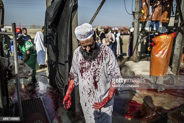 A South African Muslim his jalabiya stained with blood from a bull stands with others as they gathered during a ritual slaughter at a halal abattoir...