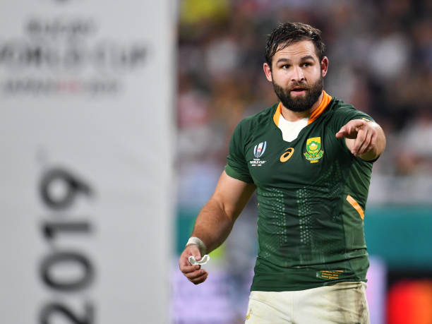 KOBE, JAPAN - OCTOBER 08: South Africa's Cobus Reinach looks on during the Rugby World Cup 2019 Group B game between South Africa and Canada at Kobe Misaki Stadium on October 8, 2019 in Kobe, Hyogo, Japan. (Photo by Ashley Western/MB Media/Getty Images)