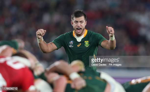 South Africa's Handre Pollard celebrates on the final whistle of the 2019 Rugby World Cup Semi Final match at International Stadium Yokohama