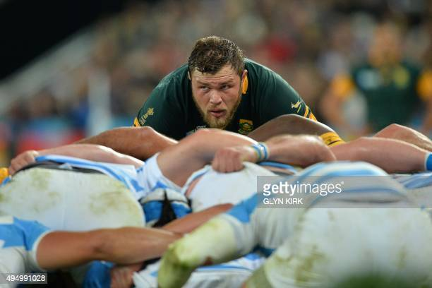 South Africa's number 8 Duane Vermeulen prepares for a scrum during the bronze medal match of the 2015 Rugby World Cup between South Africa and...