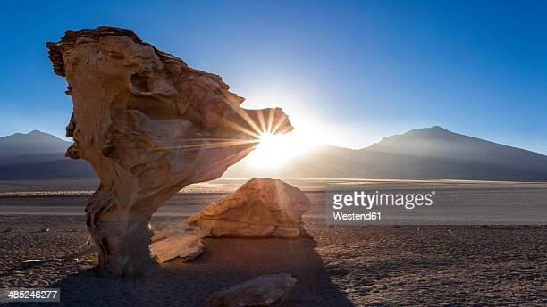 south america, bolivia, atacama desert, altiplano, siloli desert, rock formation arbol de piedra - bolivien stock-fotos und bilder