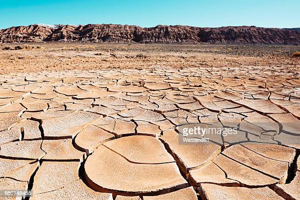 South America, Chile, Dry cracked earth in the Atacama desert