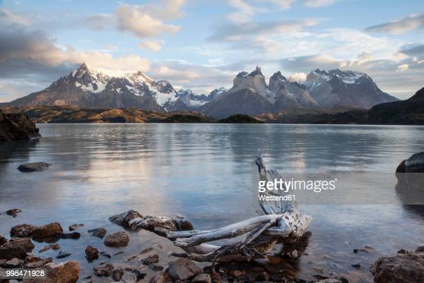 south america, chile, patagonia, torres del paine national park, cuernos del paine, lake pehoe - torres del paine national park stock photos and pictures